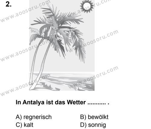 Almanca 5 Dersi 2014 - 2015 Yılı 2. Dönem Sınavı 2. Soru
