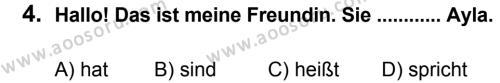 Almanca 5 Dersi 2014 - 2015 Yılı 2. Dönem Sınavı 4. Soru