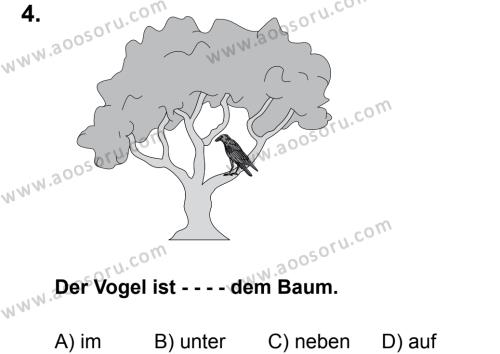 Almanca 5 Dersi 2015 - 2016 Yılı 3. Dönem Sınavı 4. Soru