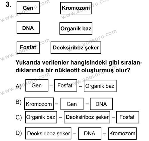 Fen Bilimleri 8 Dersi 2011 - 2012 Yılı 2. Dönem Sınavı 3. Soru