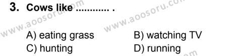 İngilizce 5 Dersi 2012 - 2013 Yılı 1. Dönem Sınavı 3. Soru