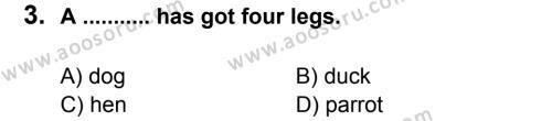 İngilizce 5 Dersi 2012 - 2013 Yılı 2. Dönem Sınavı 3. Soru