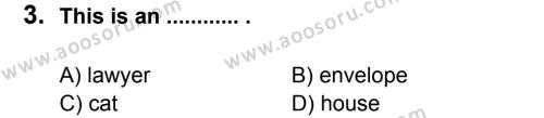 İngilizce 6 Dersi 2012 - 2013 Yılı 3. Dönem Sınavı 3. Soru