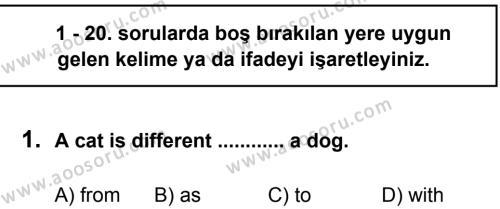 İngilizce 7 Dersi 2013 - 2014 Yılı 3. Dönem Sınavı 1. Soru