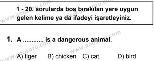 İngilizce 8 Dersi 2012 - 2013 Yılı 3. Dönem Sınavı 1. Soru