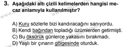 Türkçe 5 Dersi 2016 - 2017 Yılı 2. Dönem Sınavı 3. Soru