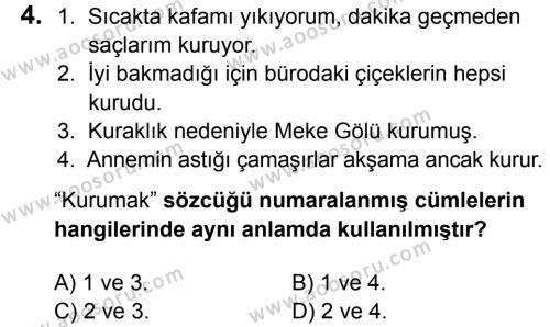 Türkçe 5 Dersi 2016 - 2017 Yılı 3. Dönem Sınavı 4. Soru