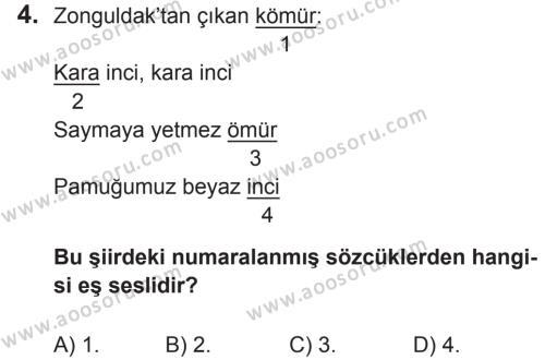 Türkçe 5 Dersi 2017 - 2018 Yılı 2. Dönem Sınavı 4. Soru