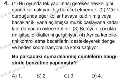 Türkçe 5 Dersi 2018 - 2019 Yılı 2. Dönem Sınavı 4. Soru