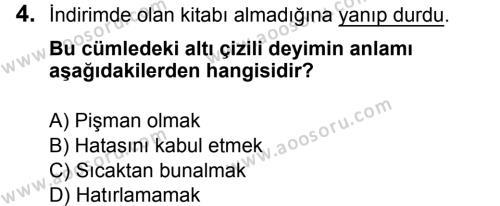 Türkçe 5 Dersi 2018 - 2019 Yılı 3. Dönem Sınavı 4. Soru