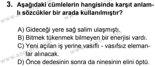 Türkçe 6 Dersi 2012 - 2013 Yılı 2. Dönem Sınavı 3. Soru