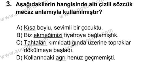 Türkçe 6 Dersi 2013 - 2014 Yılı 3. Dönem Sınavı 3. Soru