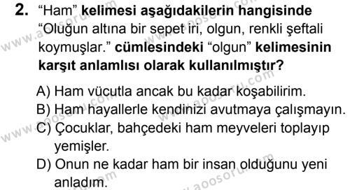 Türkçe 6 Dersi 2015 - 2016 Yılı 3. Dönem Sınavı 2. Soru