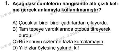 Türkçe 6 Dersi 2016 - 2017 Yılı 1. Dönem Sınavı 1. Soru