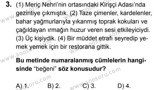 Türkçe 6 Dersi 2016 - 2017 Yılı 2. Dönem Sınavı 3. Soru