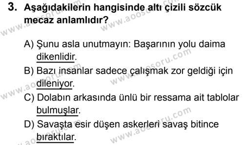 Türkçe 6 Dersi 2019 - 2020 Yılı 2. Dönem Sınavı 3. Soru