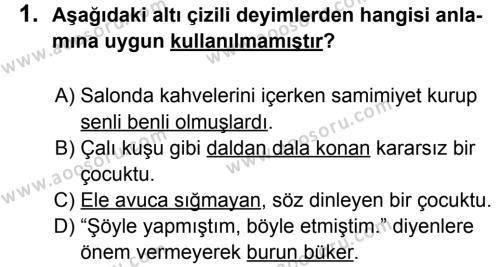 Türkçe 7 Dersi 2012 - 2013 Yılı 2. Dönem Sınavı 1. Soru