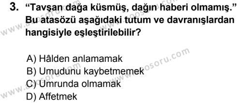 Türkçe 7 Dersi 2013 - 2014 Yılı 3. Dönem Sınavı 3. Soru