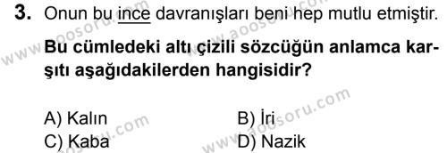 Türkçe 7 Dersi 2016 - 2017 Yılı 3. Dönem Sınavı 3. Soru