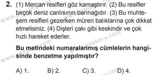 Türkçe 7 Dersi 2018 - 2019 Yılı 2. Dönem Sınavı 2. Soru