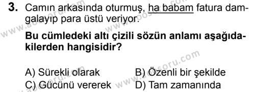 Türkçe 7 Dersi 2018 - 2019 Yılı 3. Dönem Sınavı 3. Soru