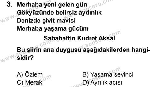 Türkçe 8 Dersi 2012 - 2013 Yılı 3. Dönem Sınavı 3. Soru