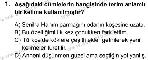 Türkçe 8 Dersi 2014 - 2015 Yılı 3. Dönem Sınavı 1. Soru