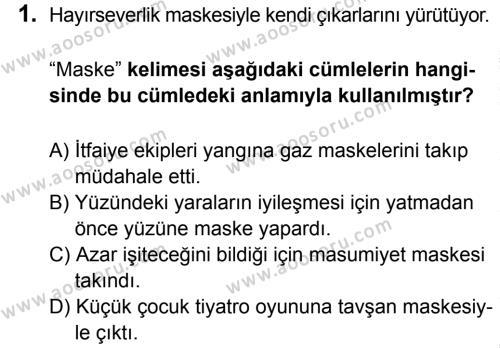 Türkçe 8 Dersi 2015 - 2016 Yılı 3. Dönem Sınavı 1. Soru