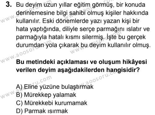 Türkçe 8 Dersi 2015 - 2016 Yılı 3. Dönem Sınavı 3. Soru