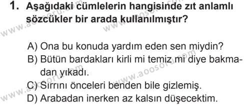 Türkçe 8 Dersi 2017 - 2018 Yılı 2. Dönem Sınavı 1. Soru