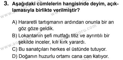 Türkçe 8 Dersi 2017 - 2018 Yılı 3. Dönem Sınavı 3. Soru