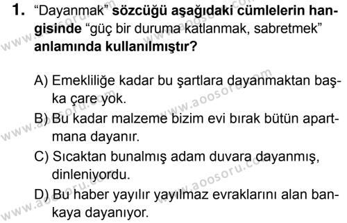 Türkçe 8 Dersi 2018 - 2019 Yılı 3. Dönem Sınavı 1. Soru